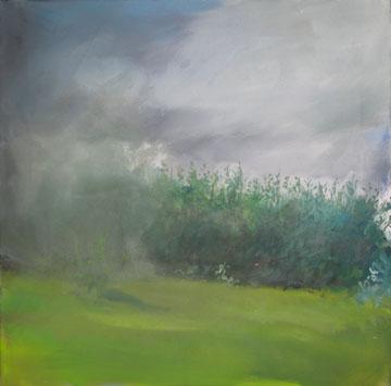 landschaft-20-07