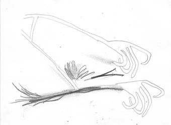 zeichnung-29-09