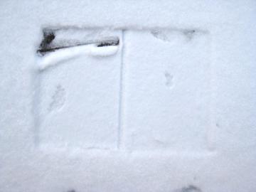 schneeohnebuch