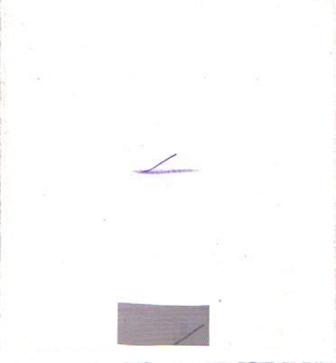 z_19-04_haekchen1