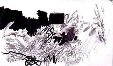 z_29-05-11_garten