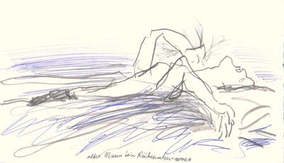 z_18-04-15rueckenschwimmer-netz