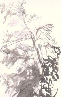 z_04-06-15garten