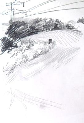 sk_05-08-15wald-8-netz
