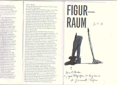 sk_30-11-16figur-raum