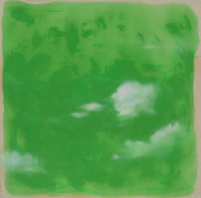 gruene-wolken-netz