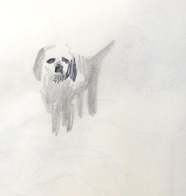 verneuil-fresselines-hund-netz