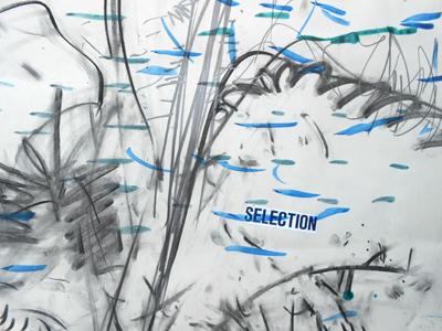 z_23-02-18gegendbaumausschnitt-netz
